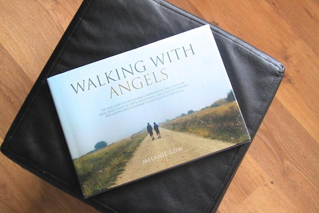 livro de família viajante Melanie Gow