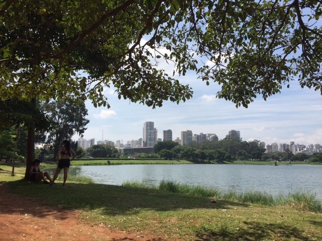 parque ibirapuera são paulo