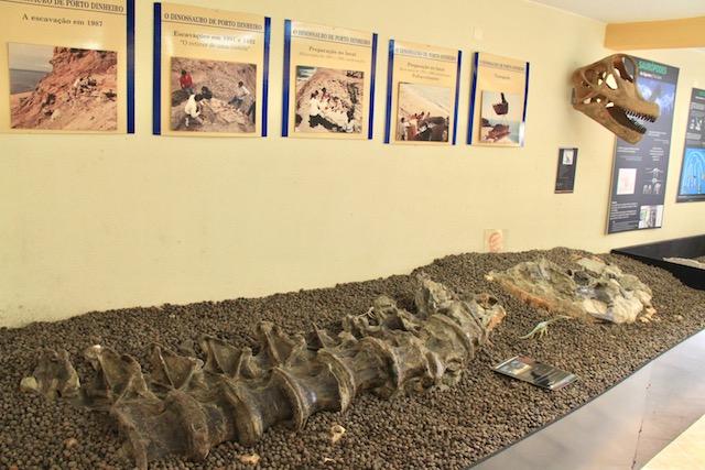 museu da lourinha descobertas