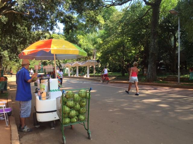 parque ibirapuera agua coco