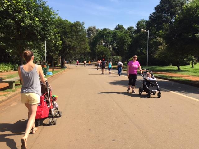 parque ibirapuera passeios
