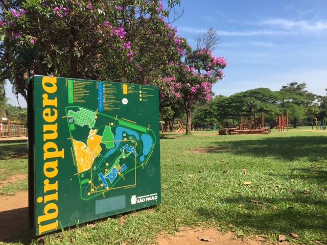 parque ibirapuera planta