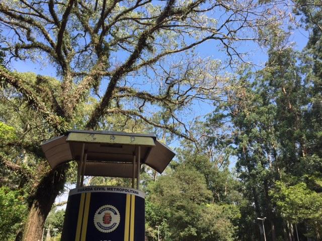 parque ibirapuera posto vigia