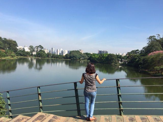 parque ibirapuera vistas