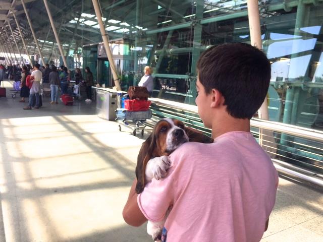 viajar de avião aeroporto