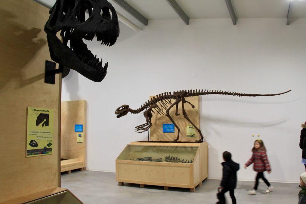 Dino Parque museu