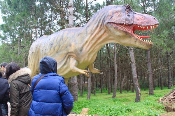 Dino Parque rex